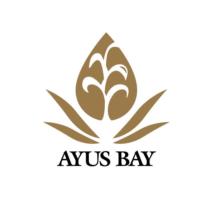 ayus_logo1