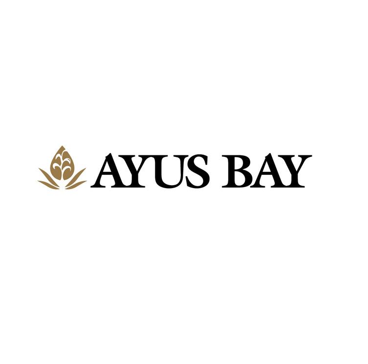 ayus_logo2